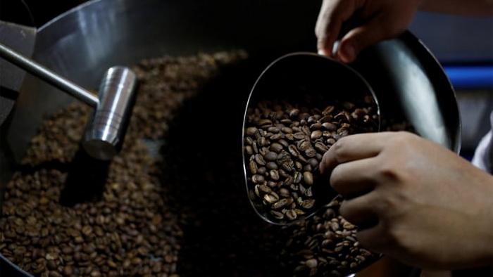 distributor biji kopi di Bandung